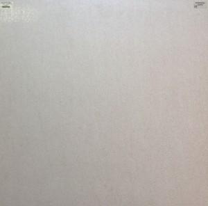 Basaltina Light Grey Lappato 60×60