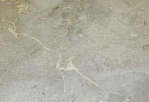 Marble Plus - Multi Grey Antique Bullnose - Marble