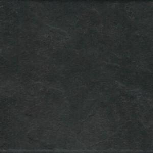 Ranger Black 298x298